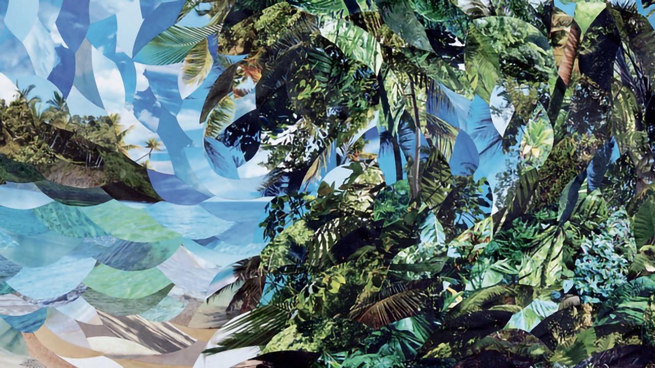 The Malpractice - The Amazon Pull